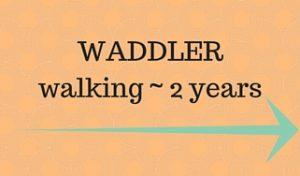 waddn